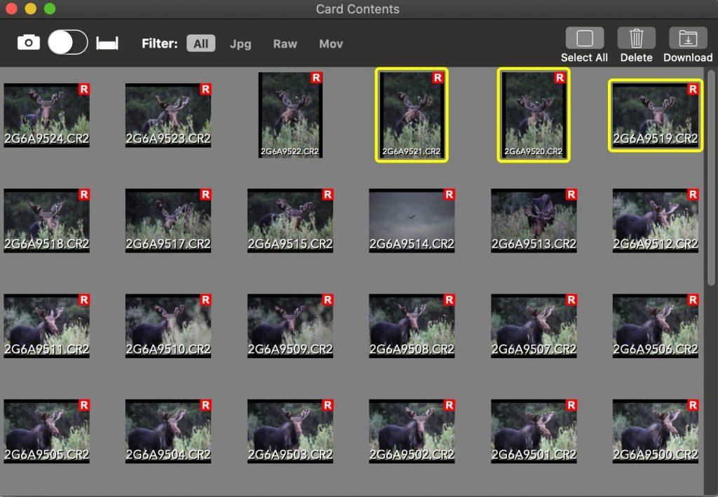 Mac App Card Contents